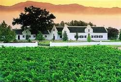 Винный туризм в ЮАР